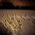 """Rain Reflected"" by Michelle Heyden © Michelle Heyden"